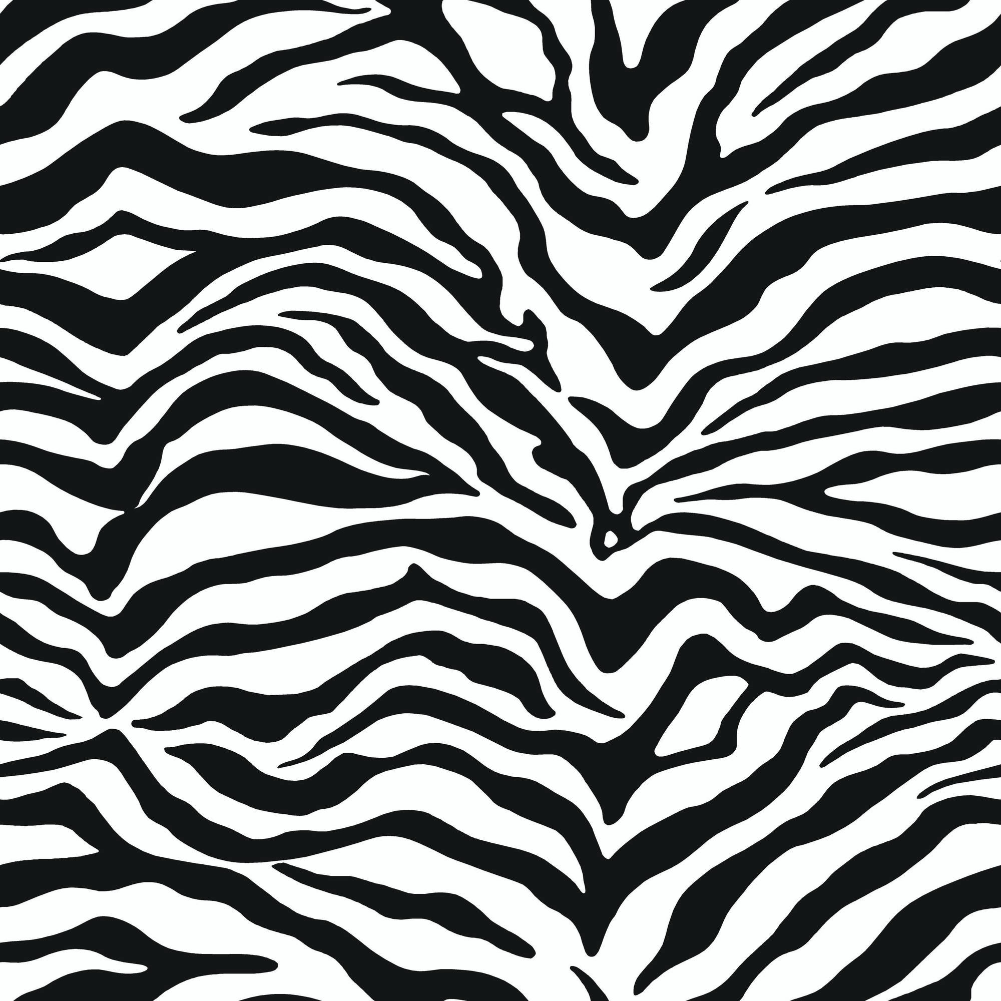 2000x2000 ... Winsome Ideas Zebra Print Wallpaper For Bedrooms Design 9 Images .