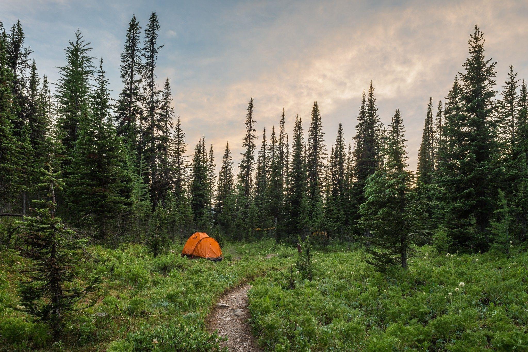 Camping Desktop Wallpaper (58+ images)