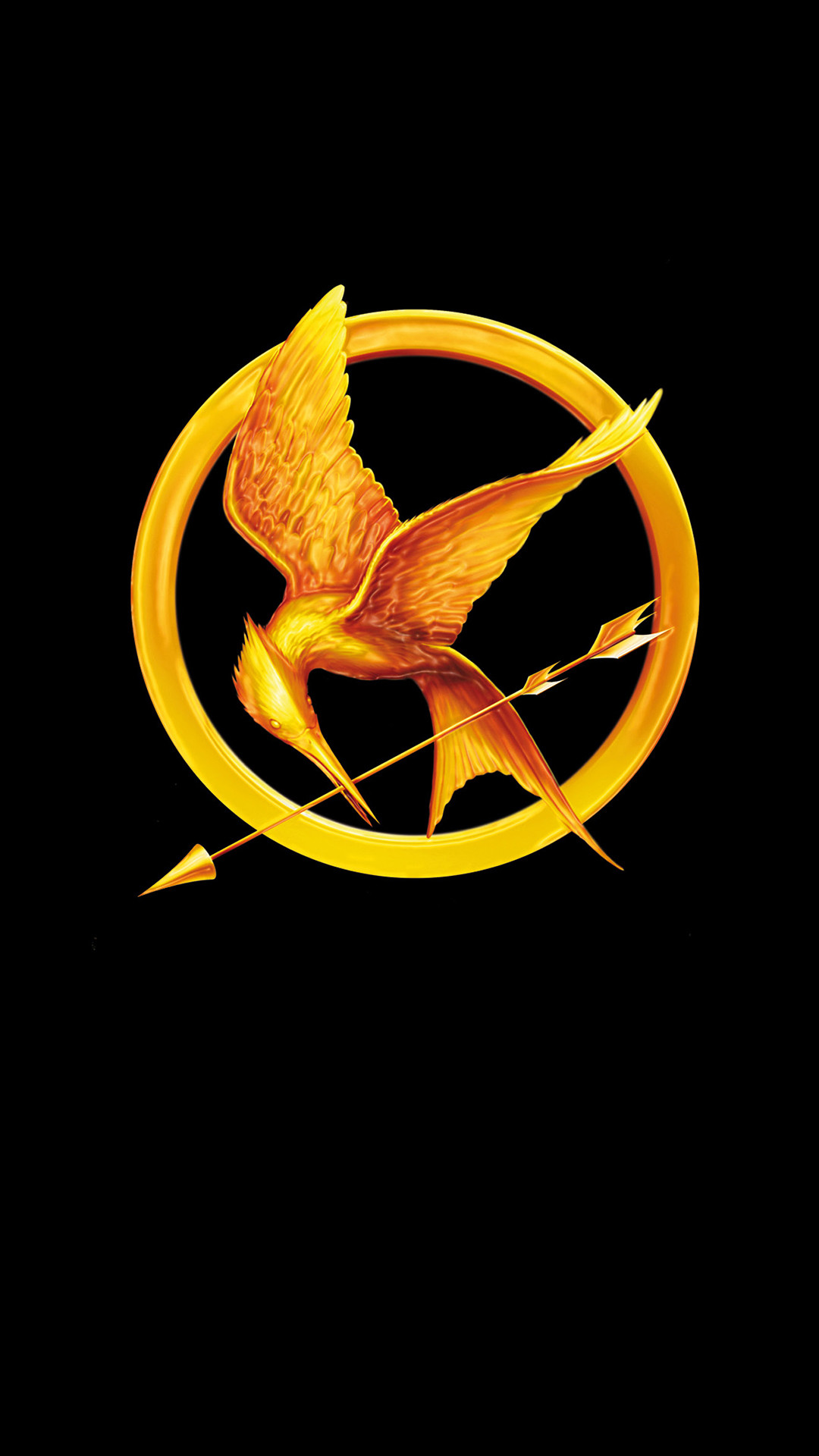 1080x1920 The Hunger Games Catching Fire