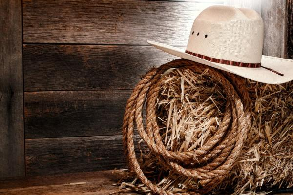 Download Free Country Western Wallpaper 1920x1080