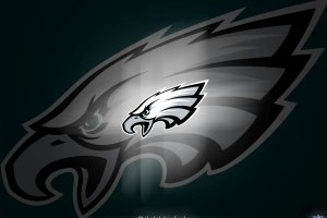 Philadelphia Eagles Live Wallpaper 1920x1536 for phones