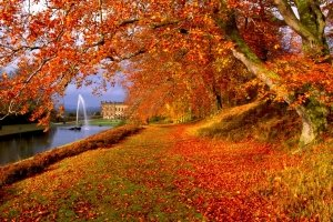 Screensavers and Wallpaper Autumn Scene 2560x1600 macbook