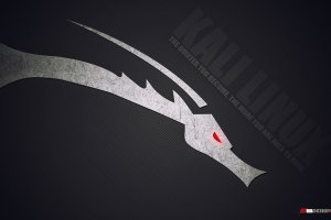 Kali Linux Wallpaper HD 1920x1200 download free