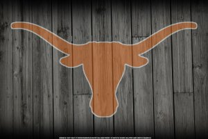 Texas Longhorn Wallpaper Screensavers 1920x1080 computer