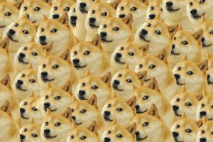 most popular Doge Meme Wallpaper 1920x1080 for 1080p