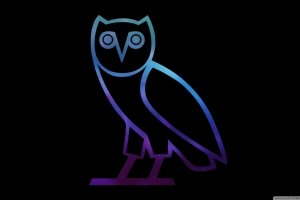 most popular Ovo HD Wallpaper 2560x1440 for iPad Pro