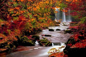Beautiful Fall Scenery Wallpaper 1920x1080 iPad