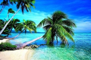 Tropical Beach HD Wallpaper 1920x1200 for windows 7