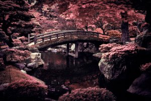 free download Japanese Desktop Wallpaper 2560x1600 pictures